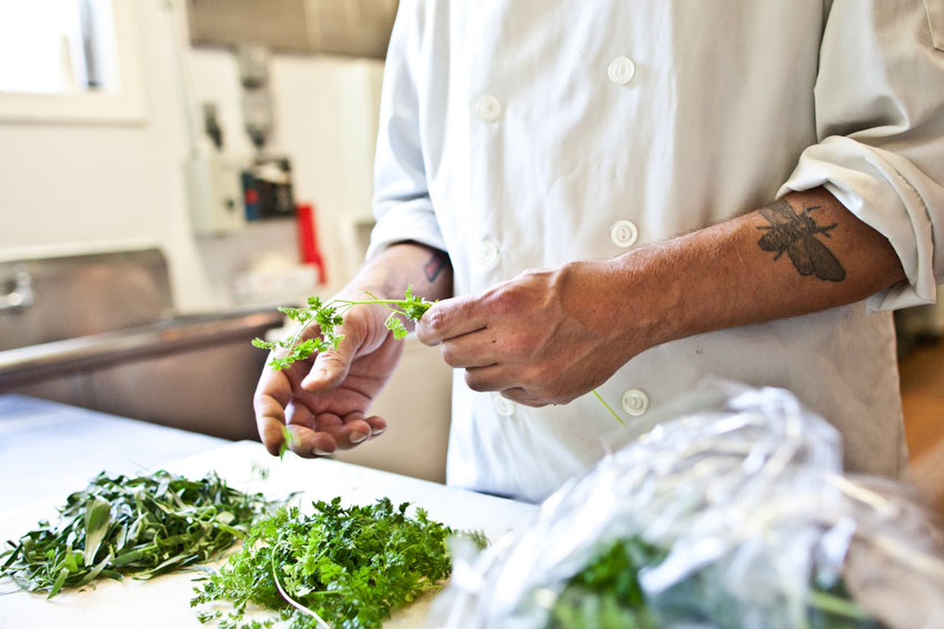 Our chef preparing herbs in the kitchen