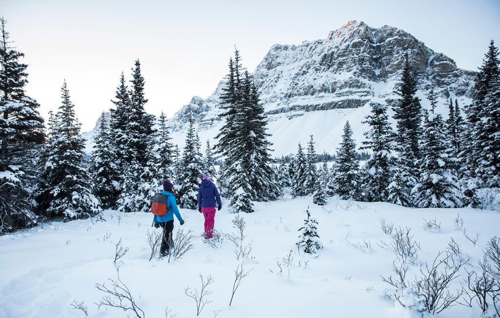 Bow Lake Snowshoeing